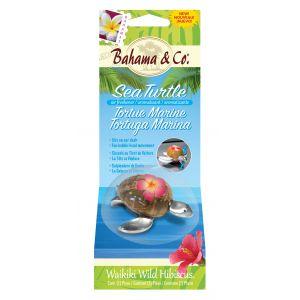 Bahama & Co. Teknős